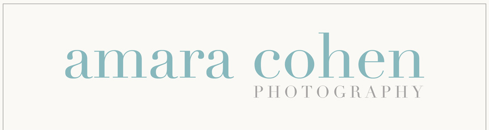 Boston, MA Maternity, Newborn, Baby and Family Photographer | Amara Cohen Photography logo